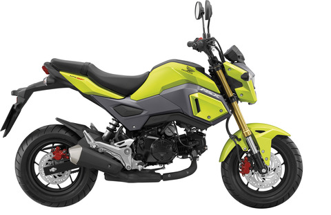 Honda-MSX125-Colorchart-Yellow-Hires