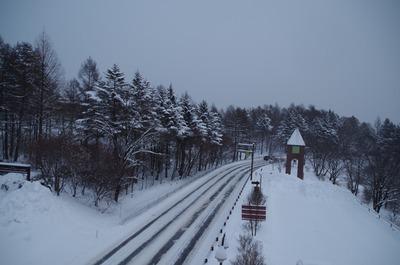 IMGP9949 雪