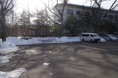 IMGP3162 雪