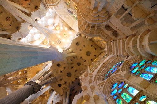 サグラダ・ファミリアの天井を見上げる
