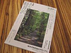 セオリーMOOK 2010 vol.4