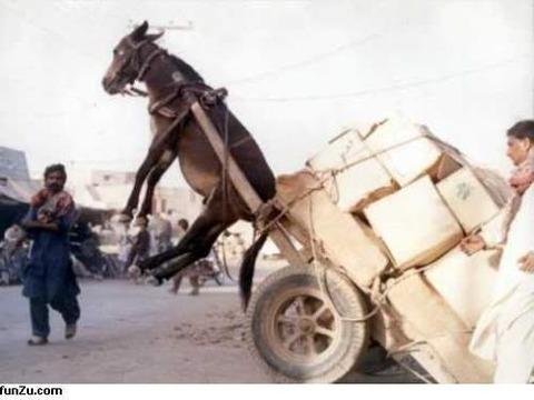 transporting_09