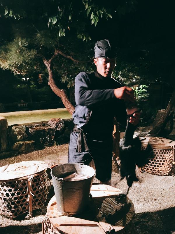 鵜匠が鵜にご褒美の魚をあげています