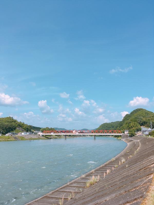 堤防から見た長良川と鮎之瀬橋。