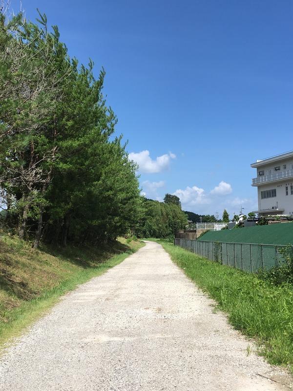 小瀬鵜飼駐車場までまっすぐの砂利道。