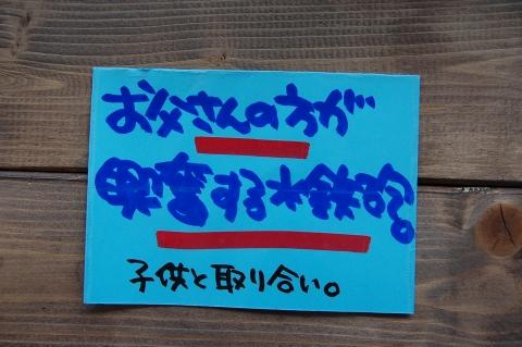 c36f6360.jpg