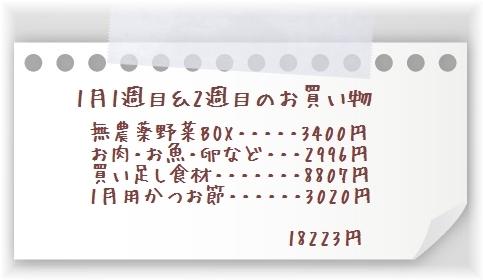 20170111-8