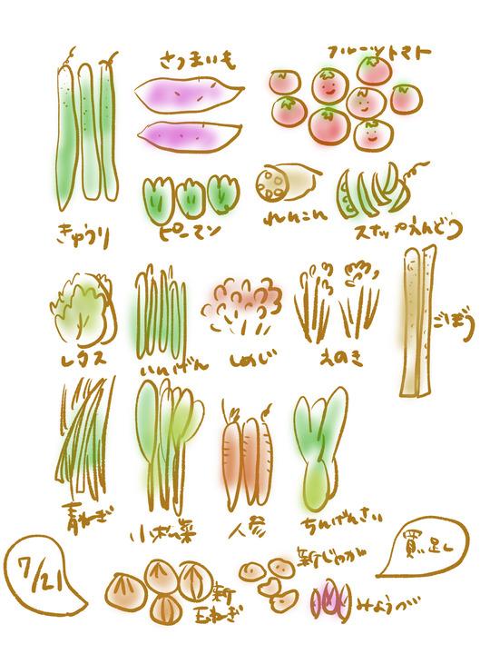 【お買い物と献立まとめ】7月20日~26日のお買物は10269円でした。カミナリと半沢直樹。