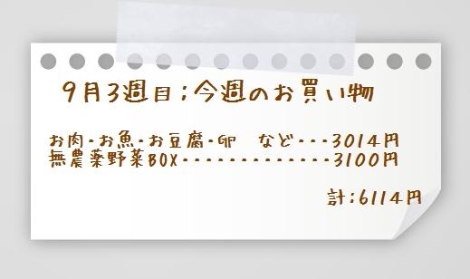 1aaaykogpaper01
