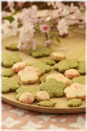 葉桜・抹茶の薄焼きクッキー。