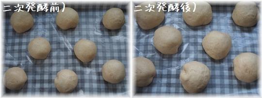 りんごパンYHF9