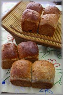 ココナツとマンゴーのミニ食パン。