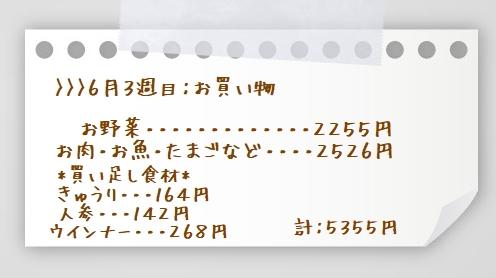 1aaaa0609~0616お買い物(お肉)yhf
