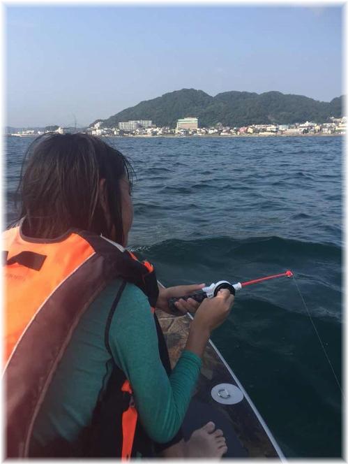 YHF海12