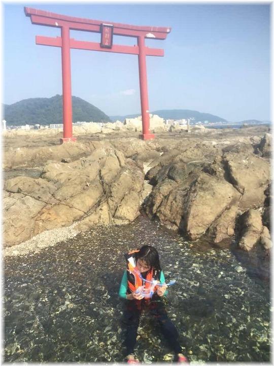 YHF海14