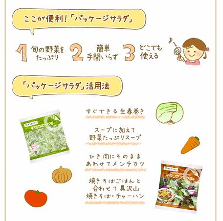 『サラダクラブ』ページ リニューアル♪&ムースドレッシングのレシピ♪