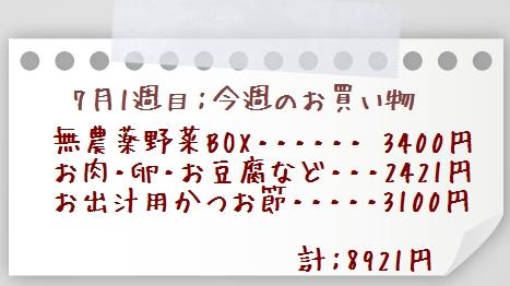 1あtこfdpaper010705-2