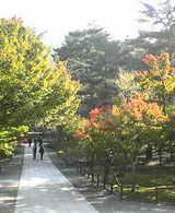 京都の景色 南禅院