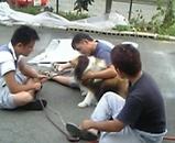 犬とお友達
