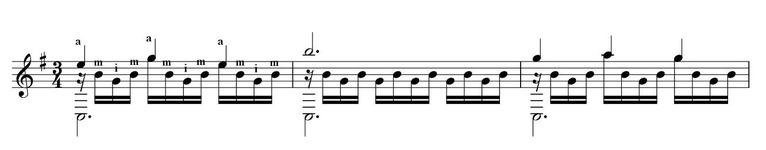 カルカッシno19