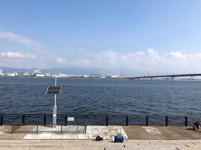 神戸空港 釣果