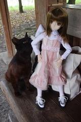 さあらさんVS猫_025
