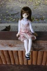 さあらさんVS猫_003