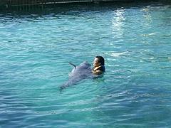 Isla Mujeres (Dolphin Adventure) 3