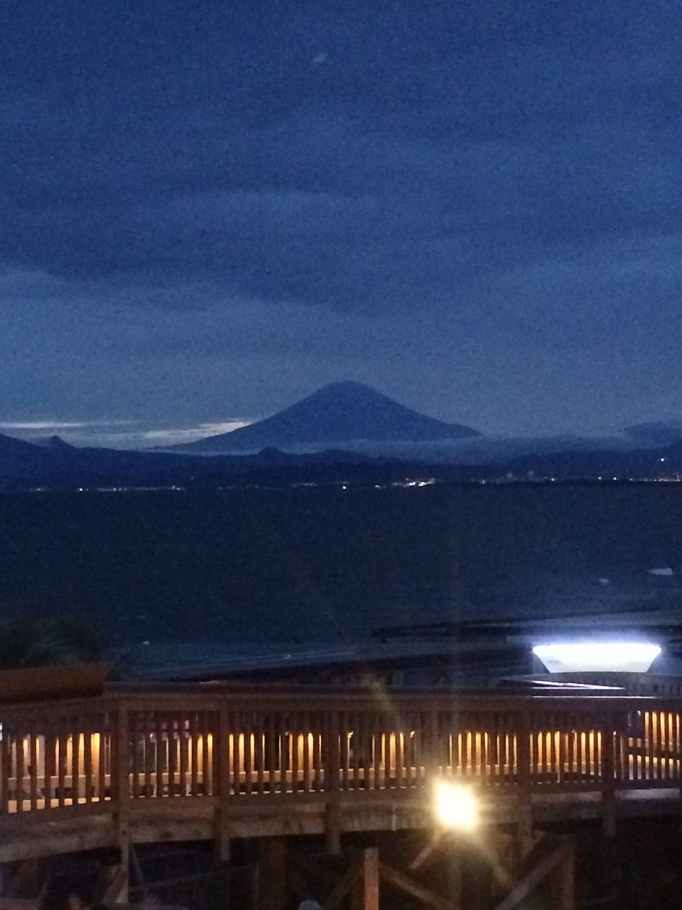 23 新江ノ島水族館 15