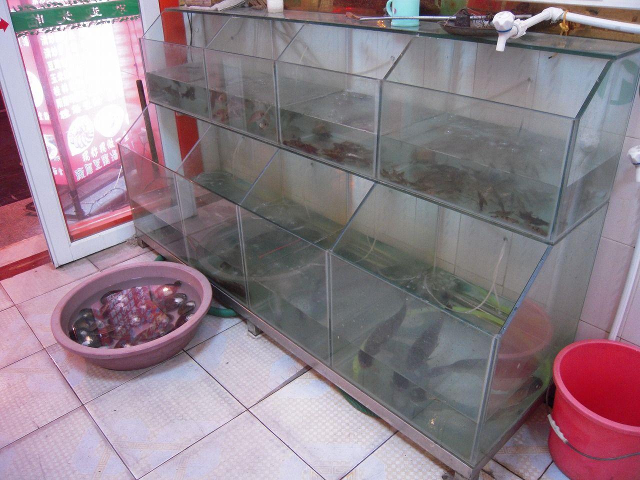 22 Gui Lin 1