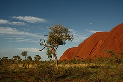 Ayers Rock 5