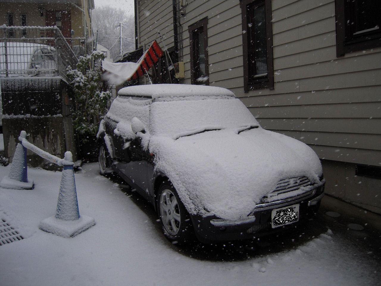 29 Snowy 2