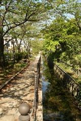 25 散歩(杉田) 1