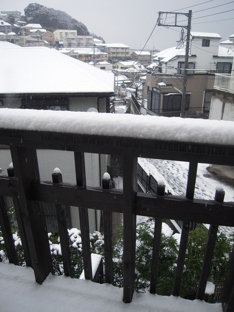29 Snowy 3