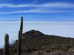 ウユニ塩湖 10