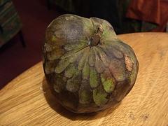 Fruits (チリモヤ)