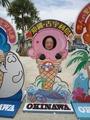 沖縄クマママ