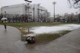 錦糸公園雪