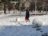 雪の錦糸公園