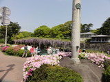 小田原城9