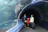 マリンピア日本海2