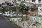錦糸町の雪5