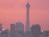 タワー夕日