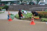 公園整備3