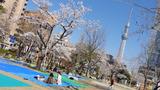 錦糸公園タワー3