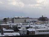 新潟雪32