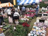 東京都農業祭14