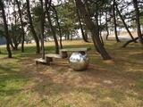 若洲海浜公園5