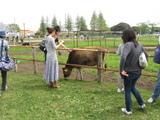 マザー牧場3