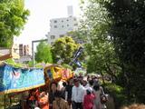 藤祭り17